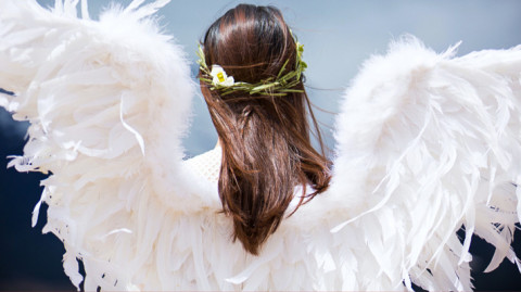 Disable the Wings of Mind